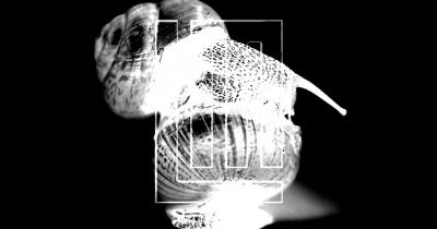 Lindemann випустили кліп Ich weiß es nicht