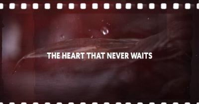 Джо Бонамасса поділився треком The Heart That Never Waits